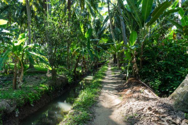 En vélo, dans le delta du Mékong au Vietnam
