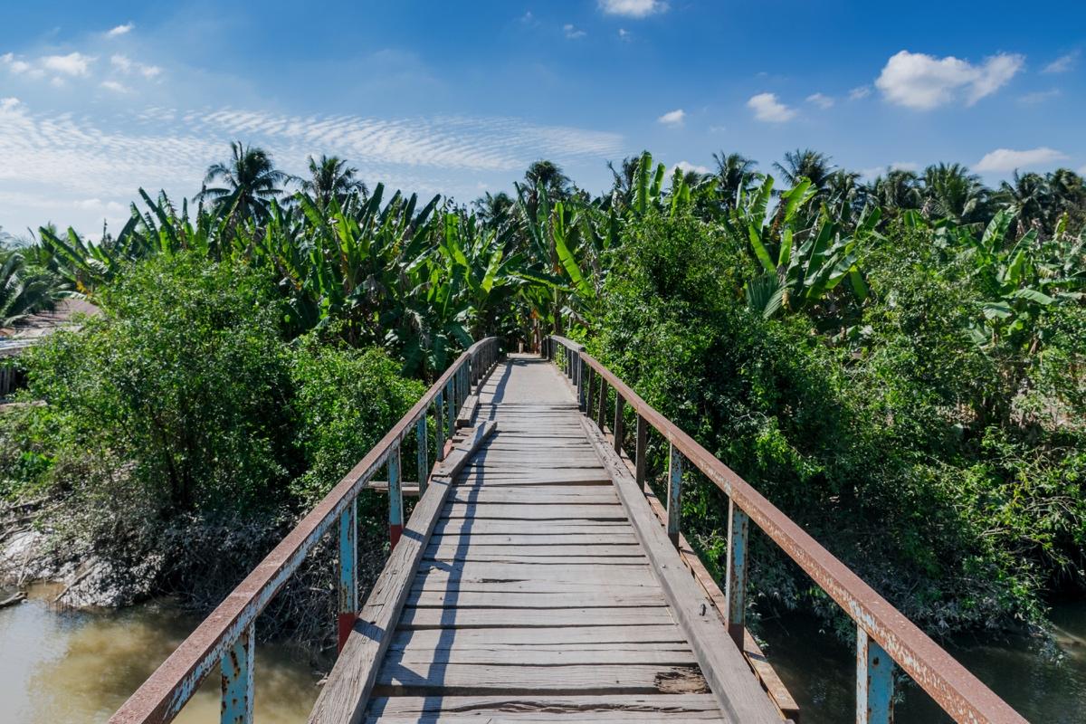 Pont sur le delta du Mékong