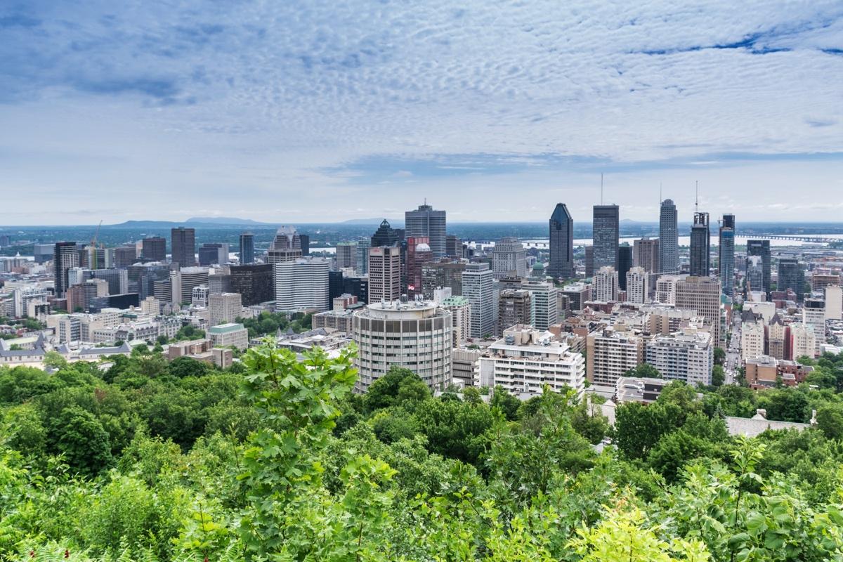 Vue sur Montréal depuis le Mont Royal