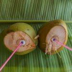 Fresh coconuts !
