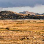 Vue sur les environs du lac Titicaca