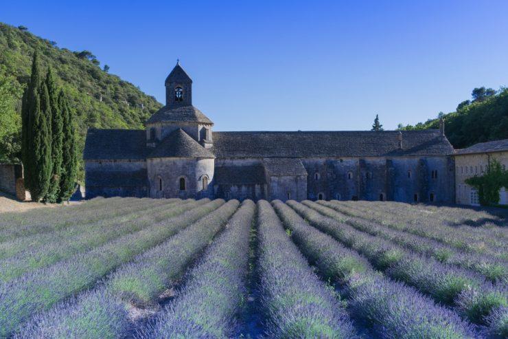 Abbaye de Sénanque dans le Luberon