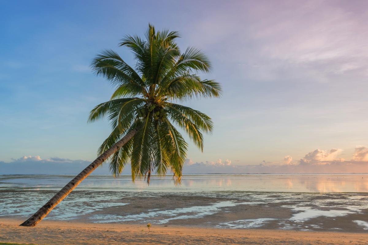 Plage à marée basse à l'hôtel Isla Cabana