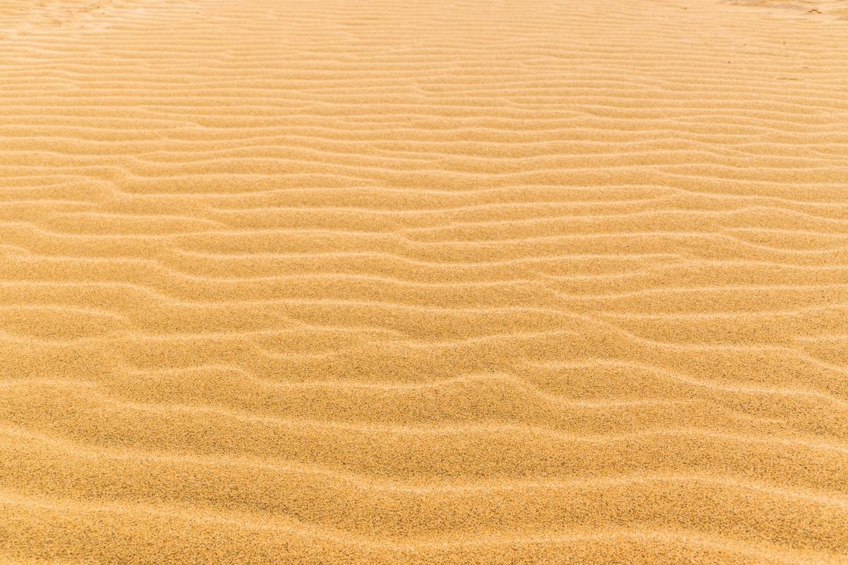 Rides sur le sable des dunes