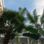 Vue depuis le patio de l'Heure Bleue