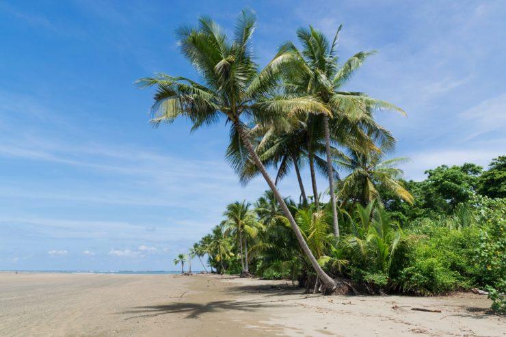 Plage du parc national marin de Ballena au Costa Rica