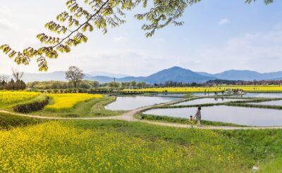 Visiter Gyeongju en Corée du Sud