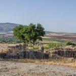 Ruines romaines de Volubilis au Maroc