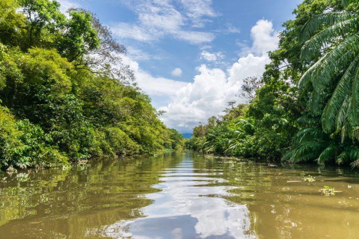En bateau sur le Rio Sierpe