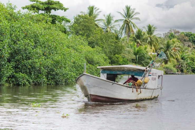 Fisherman - Rio Sierpe, Costa Rica