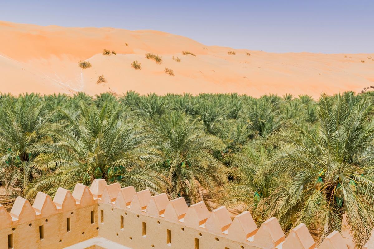 Fort dans l'oasis de Liwa aux UAE