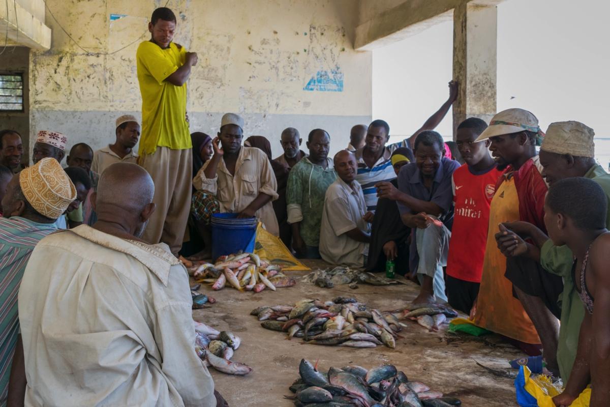 Marché aux poissons de Matemwe