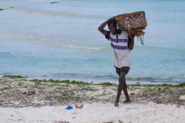 Pêcheur sur la plage de Kizimkazi