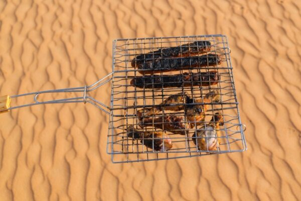Barbecue dans le Rub al Khali