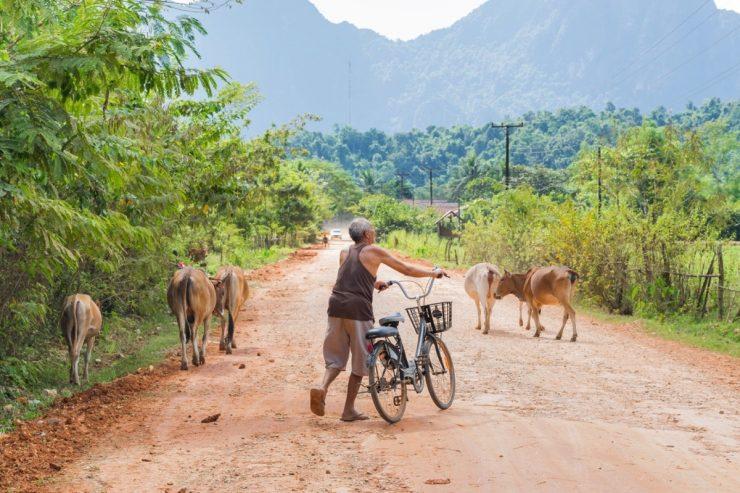Dans la campagne proche de Vang Vieng