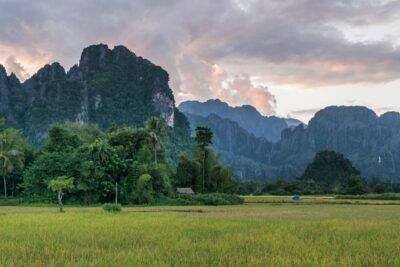 Rizière à Vang Vieng au Laos