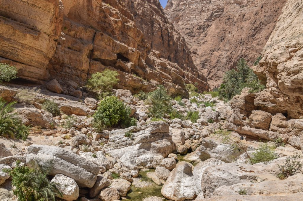 Un wadi d'Oman