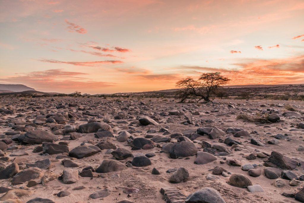 Coucher de soleil sur un reg de Mauritanie