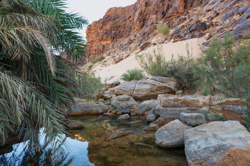 Guelta dans l'Adrar en Mauritanie