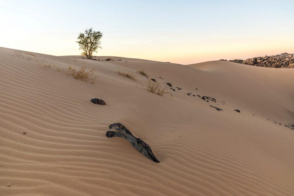 Lever de soleil en Mauritanie dans l'Adrar