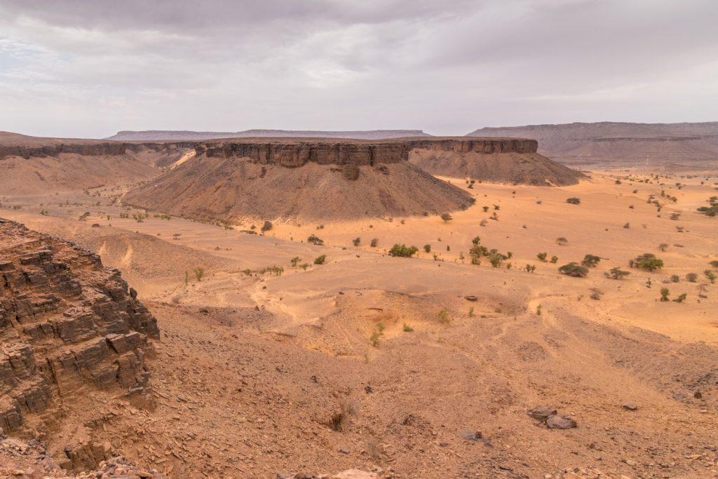 Panorama sur un canyon de l'Adrar en Mauritanie