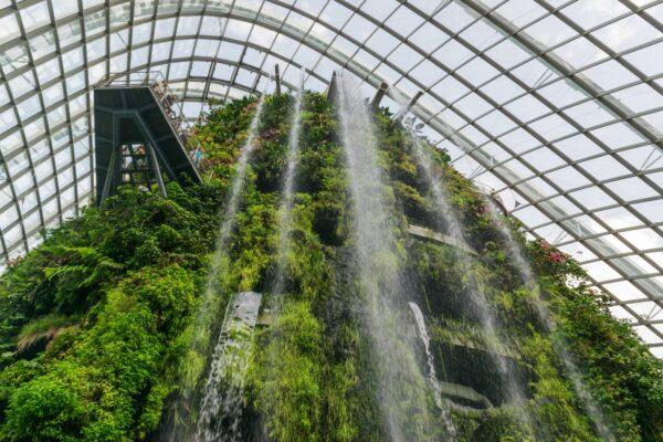 Cloud Forest à Singapour