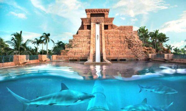 Parc aquatique à Dubai