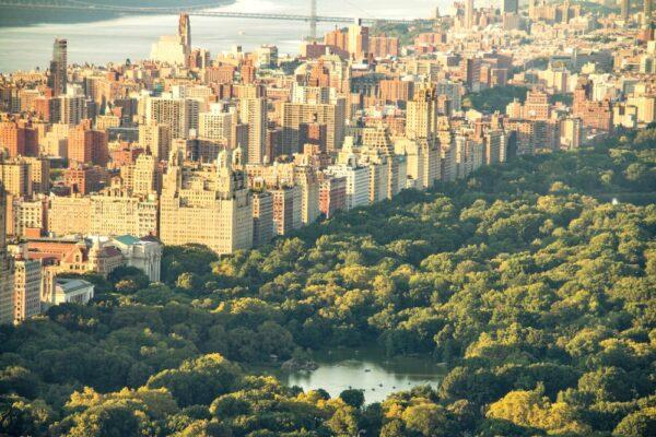 Vue sur Central Park