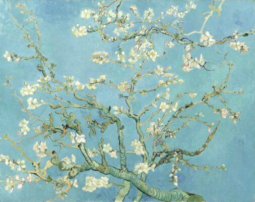 Amandier en fleurs de Vincent Van Gogh