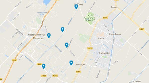 Carte des champs de tulipes en Hollande près de Lisse