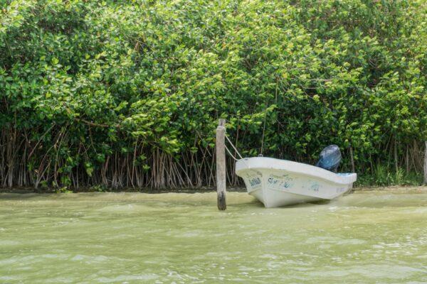 Muyil dans le Yucatan