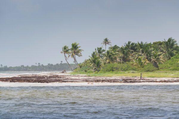Plage de Sian Ka'an dans le Yucatan