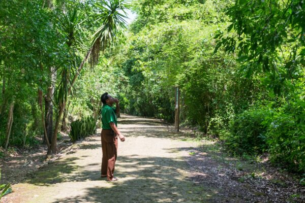 Guide dans la réserve naturelle de Punta Laguna