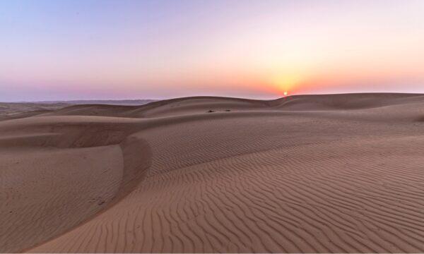 Wahiba Sands : préparer une nuit dans le désert à Oman