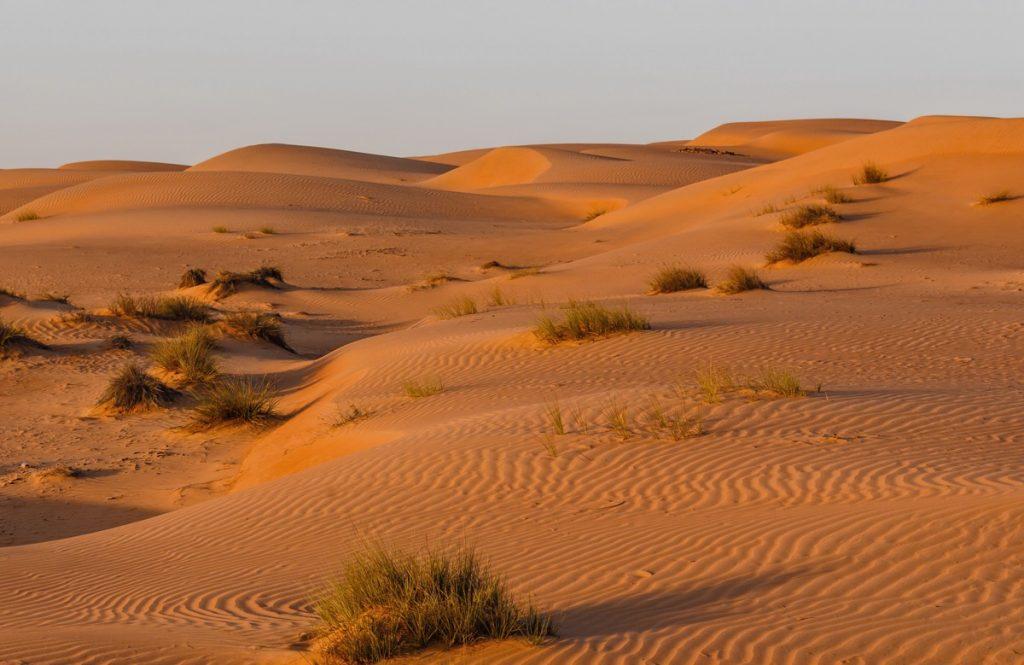 Wahiba Sands, désert à Oman