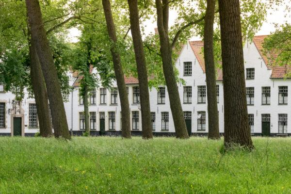 Béguinages de Bruges : visite incontournable