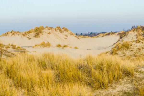 Bray-Dunes sur la Côte d'Opale