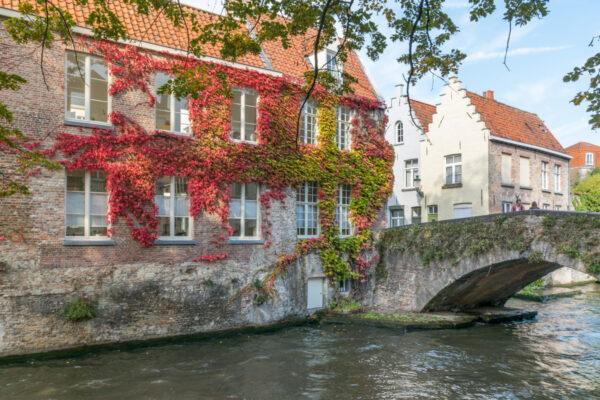 Canal à Bruges en automne