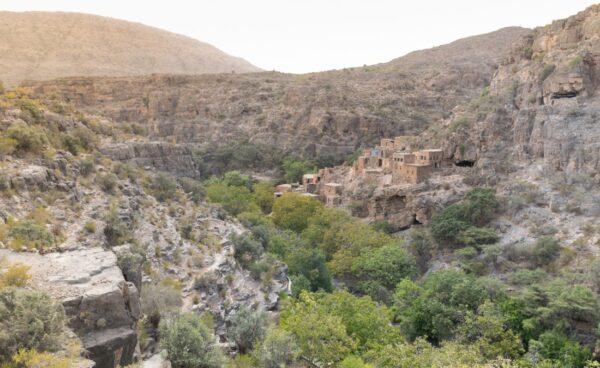 Jebel Akhdar à Oman
