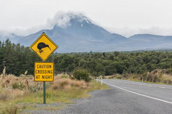 Itinéraire de road trip en Nouvelle-Zélande