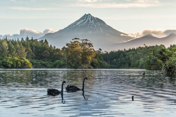Itinéraire en Nouvelle Zélande sur l'île du nord