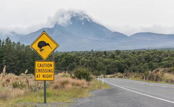 Location de van / voiture / camping-car en Nouvelle-Zélande