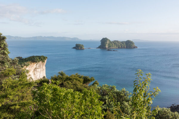 Péninsule de Coromande, road trip en Nouvelle-Zélande