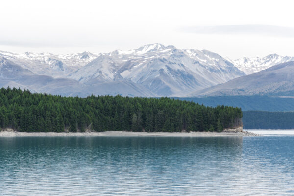 Pukaki Lake et Mont Cook