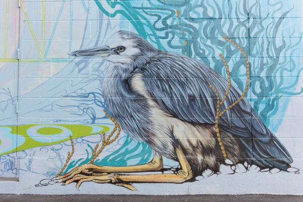 Street art à Auckland en Nouvelle-Zélande