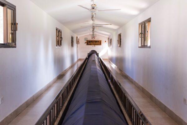 Tombe de Nabi Imran à Salalah