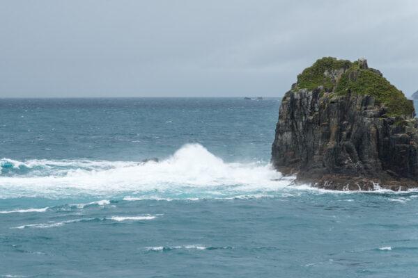 Traversée en ferry île du nord à île du sud en Nouvelle-Zélande