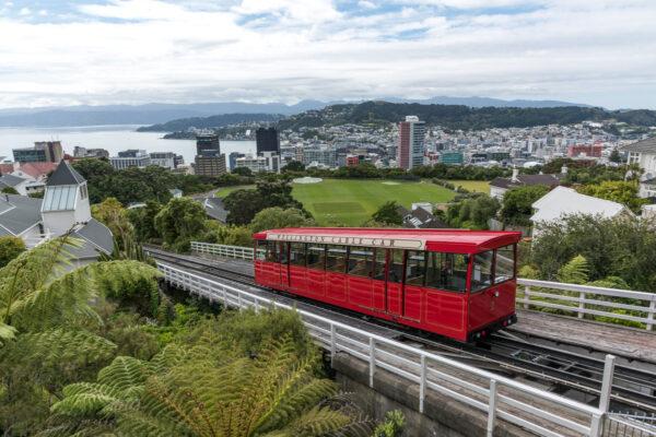 Visite de Wellington : étape d'un itinéraire en NZ