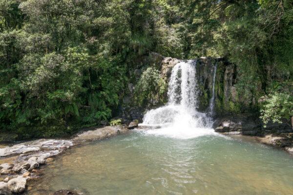 Waiau Falls à Coromandel