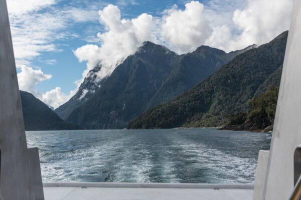 Excursion en bateau à Milford Sound